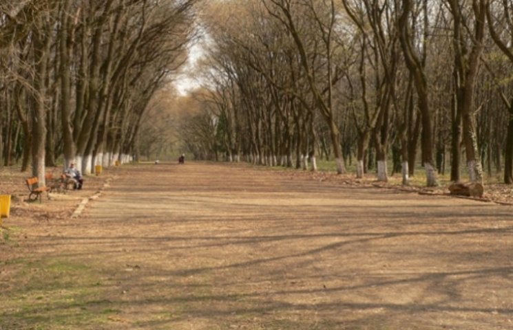 В Ужгороді хочуть звільнити директора Боздоського парку