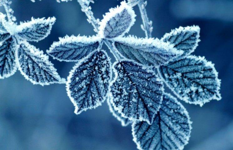 Закарпаття: прогноз погоди на 30 грудня - розпалюйте великі вогнища