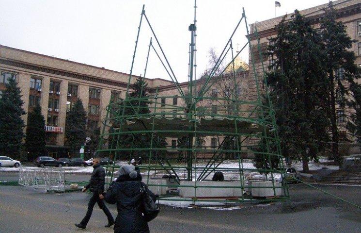 В Днепре начали строить главную новогоднюю елку
