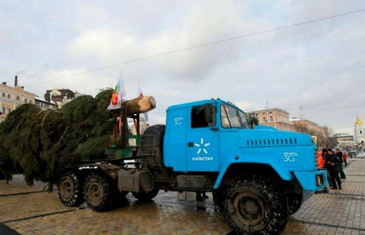 Головну ялинку країни до Києва привезла вантажівка КрАЗ