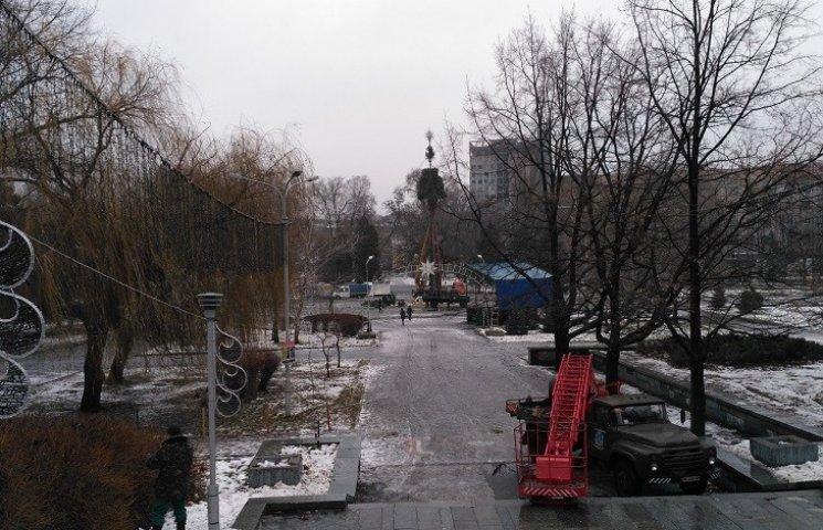 В Днипре коммунальщики устанавливают елку в парке Глобы