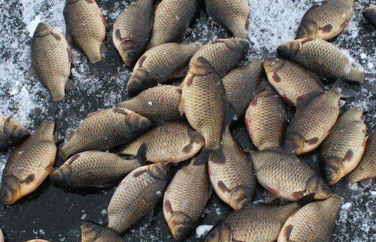 У Кременчуці затримали рибалку з незаконно виловленою рибою