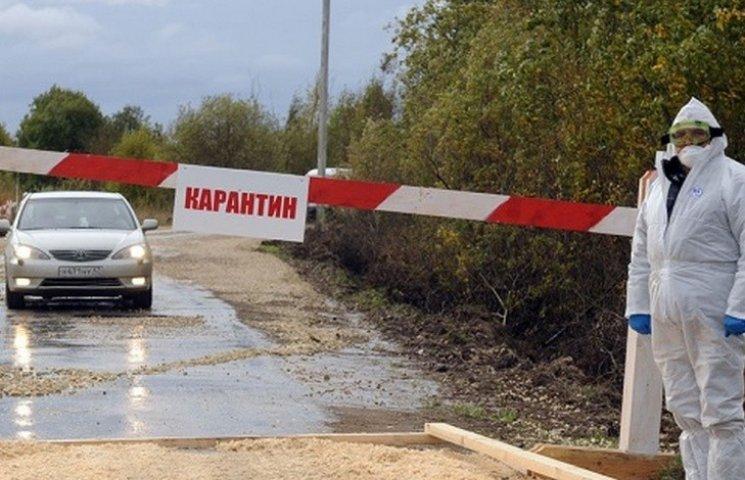 У двох селах на Вінниччині запровадили карантин через сказ