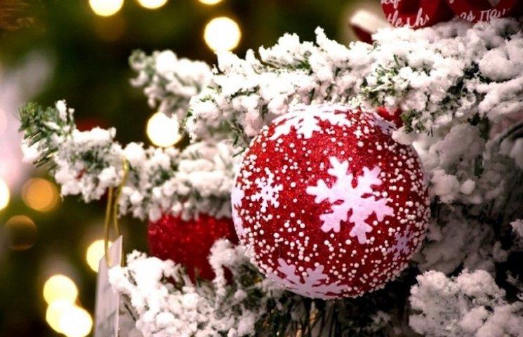 Новогоднюю елку в Лубнах откроют на Святого Николая