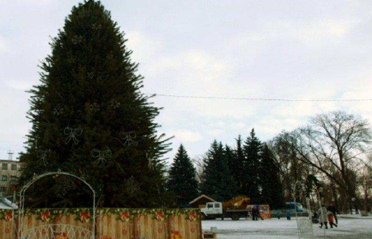 Мешканцям Павлограду на новорічні свята пропонують образ півня чи сніговички