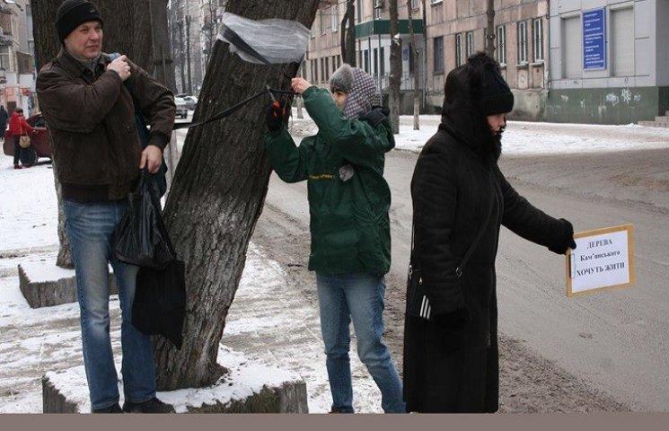В Каменском активисты устроили оплакивание спиленных деревьев