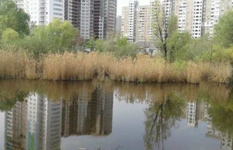"""На столичних Позняках може з'явитися екопарк """"Озеро Качине"""""""