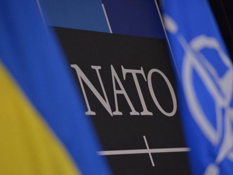 Шлях до НАТО: Які зміни очікують на Служ…