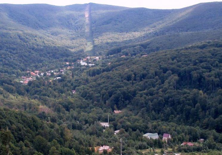 Москаль відібрав у Балоги 350 гектарів лісу (ДОКУМЕНТ)