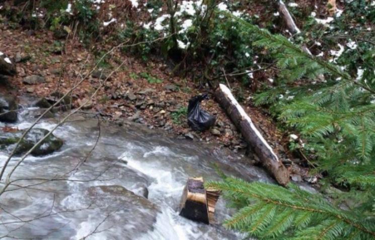 Охоронці-браконьєри більше не працюють у Карпатському заповіднику