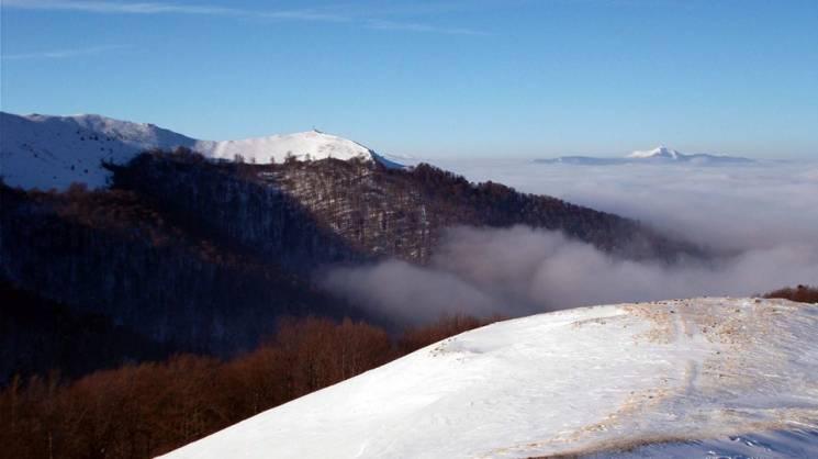 Полонина Боржава: як сніг прикрашає карпатські вершини