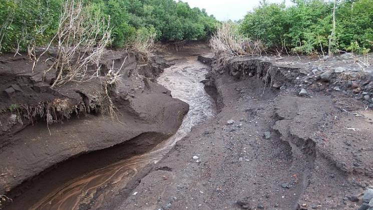 В Сочи из-за сильных дождей сошли сели…