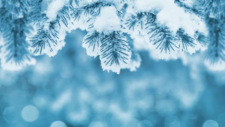 1 січня: Вдягайте найкраще, святкуйте найвеселіше і в жодному разі не працюйте