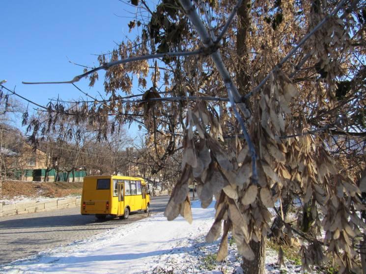 Які тарифи влаштовують перевізників і чому полтавські маршрутки - найдешевші в Україні