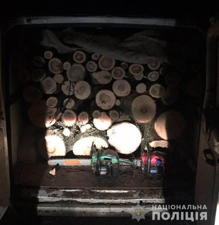 """Операція """"Ліс"""": На Кропивниччині впіймали двох """"чорних дереворубів"""""""