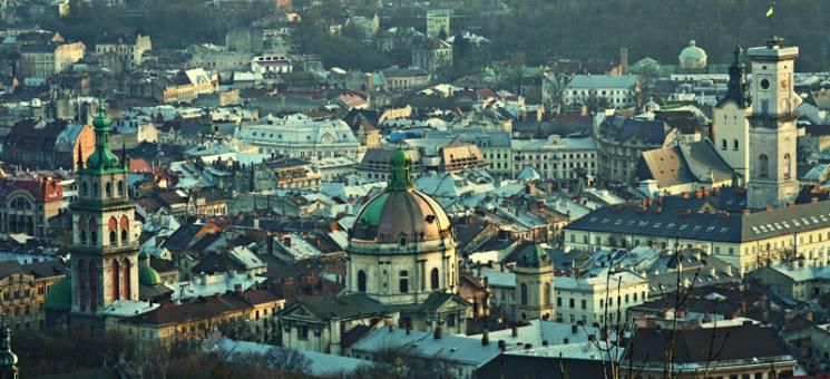 На озеленення Львова до Нового року витратять більше двох мільйонів