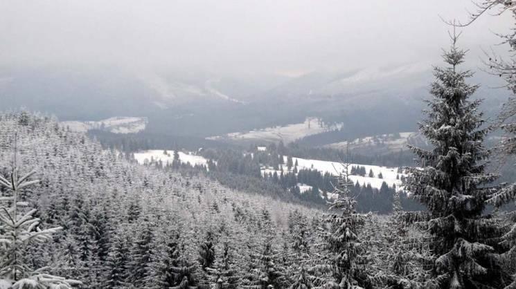 Закарпаття: Прогноз погоди на восьме грудня - опади