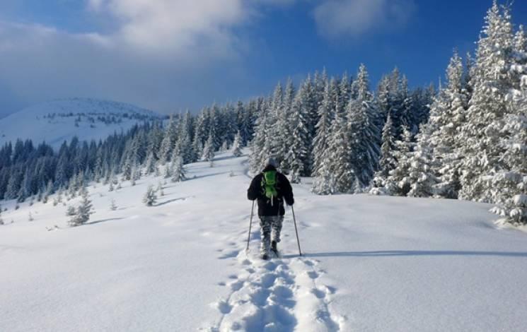 Справжня зима: У Карпатах випало більше 25 см снігу
