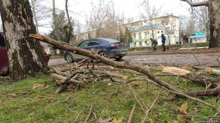 У Керчі через шквали повалені дерева та пошкоджені дахи будинків (ФОТО)
