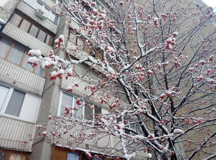 Під білою ковдрою грудня: Казкова краса засніженого Києва (ФОТО)
