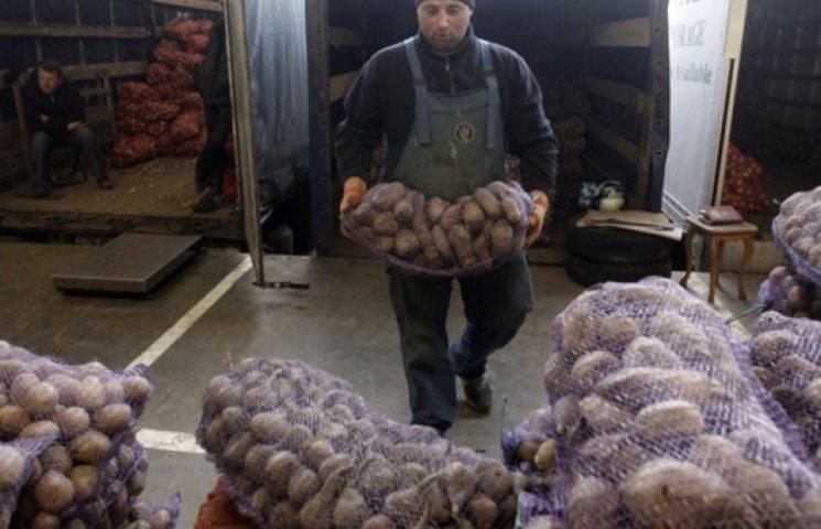 Україна подвоїла поставки овочів і фруктів в Крим