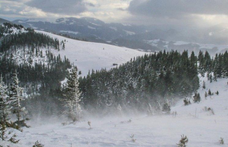 Закарпаття: прогноз погоди на 2 лютого - тільки б не мело
