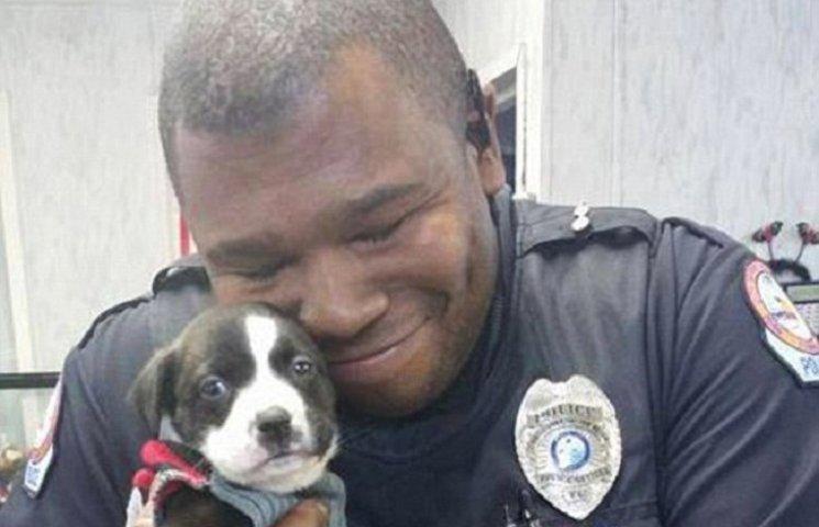 Как полисмен во время расследования в приюте взял себе щенка