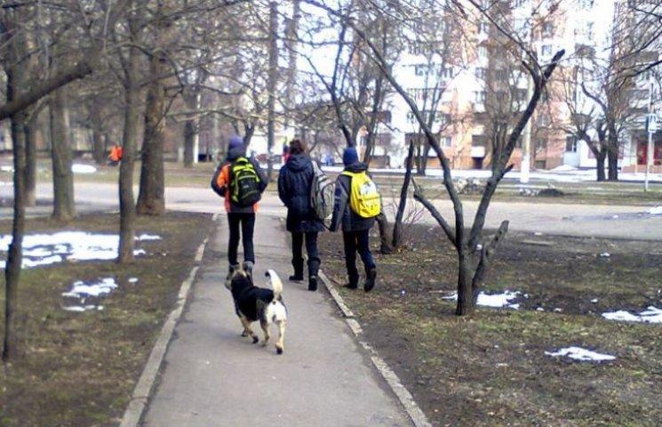 """У центрі Миколаєва троє підлітків намагались """"підірвати"""" собаку"""
