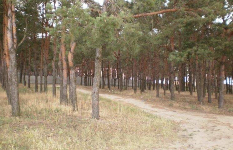 """На Миколаївщині ще одна ділянка соснового урочища """"Жовтневе"""" повернулась у власність громади"""