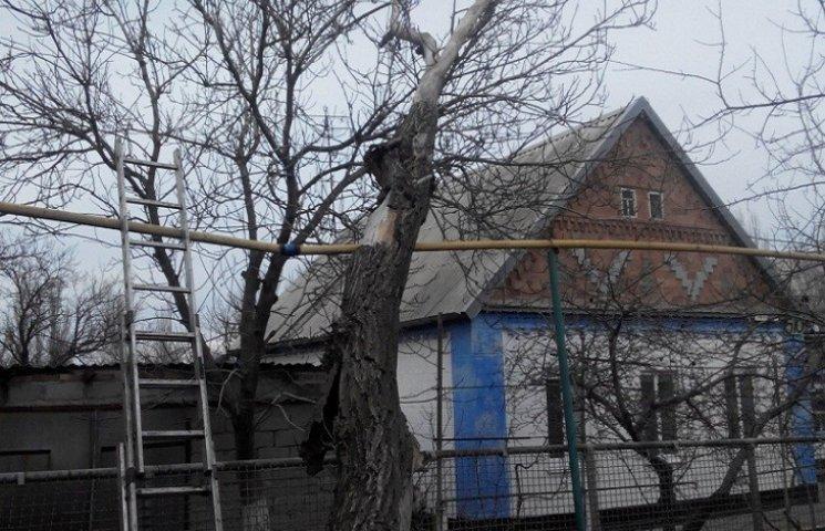 Через сильний вітер дерево впало на газову трубу, довелося терміново ізолювати пошкоджену ділянку