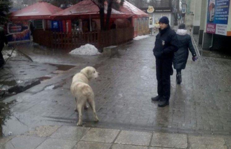 У Миколаєві патрульні врятували жінку від собаки-крадія