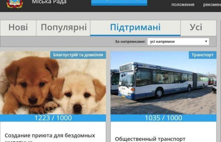 Миколаївці вимагають від влади створити ще один притулок для тварин та вирішити проблему з транспортом