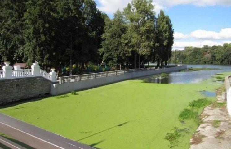 Хмельницький мер вже розглянув петицію про очищення річки Плоска