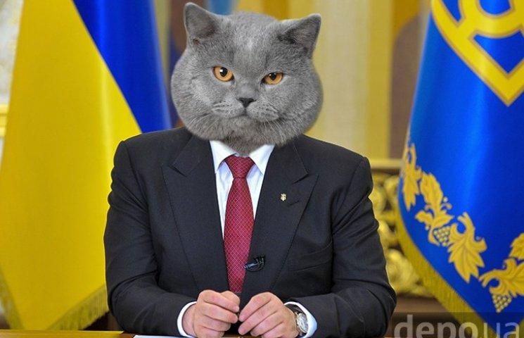 Почему украинским государством должны управлять коты (ФОТОЖАБЫ)