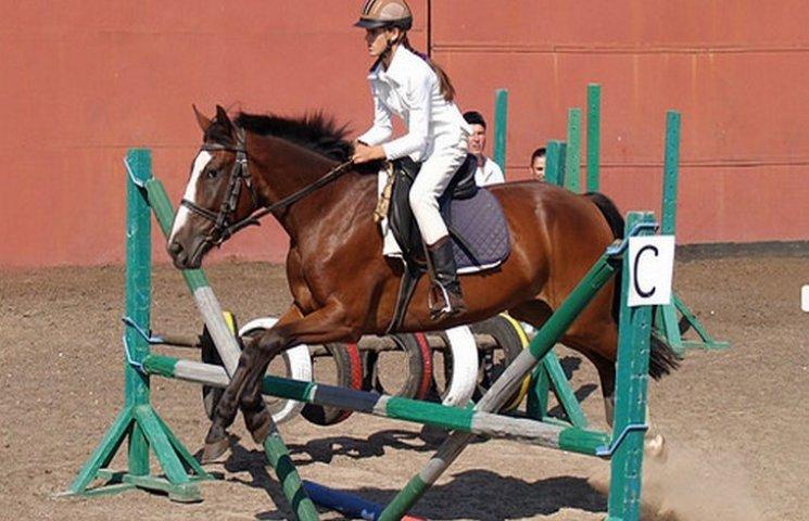 Рівненські коні переїдуть до Тернополя