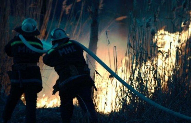 У Миколаєві підпалили парк