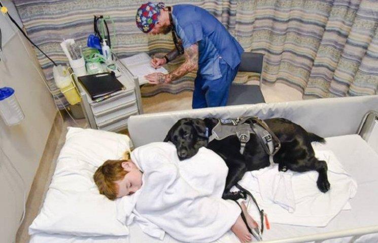 Як хлопчик, який ні з ким не говорить, лежав у лікарні з собакою