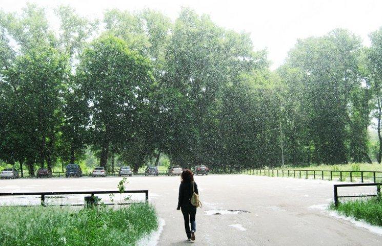 У міському парку ім. Кожедуба з