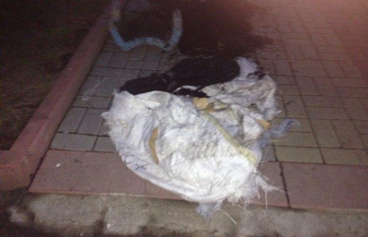 У Хмельницькому біля офісу Самооборони - на головному майдані, знайшли предмет, схожий на вибухівку