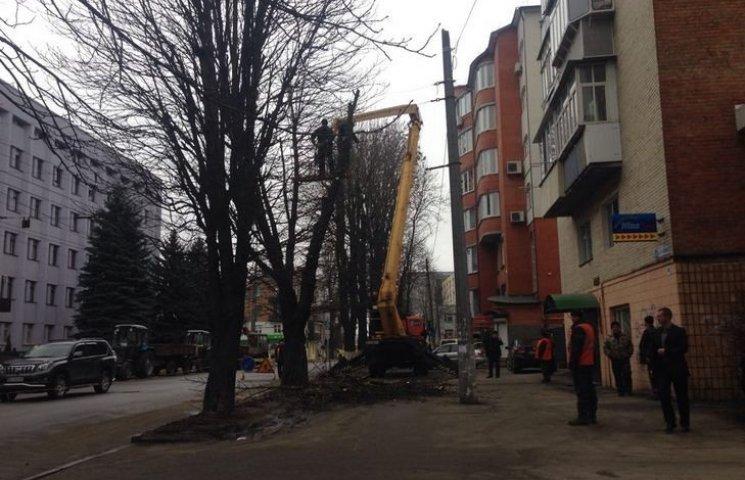 Хмельницькі комунальники взялися обрізати дерева в годину пік