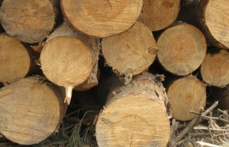"""В Калинівському районі """"на гарячому"""" затримали браконьєрів, які вирізали дуби"""