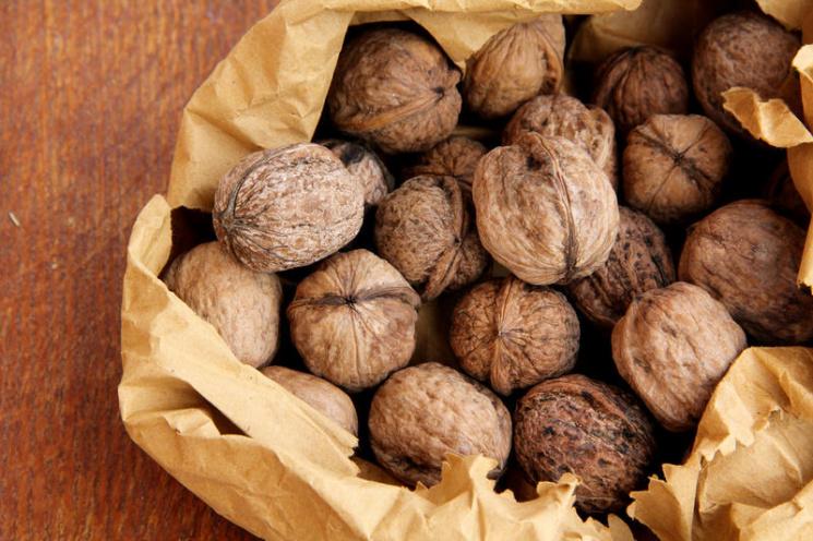 Украина стала лидером вевропейских странах поэкспорту орехов
