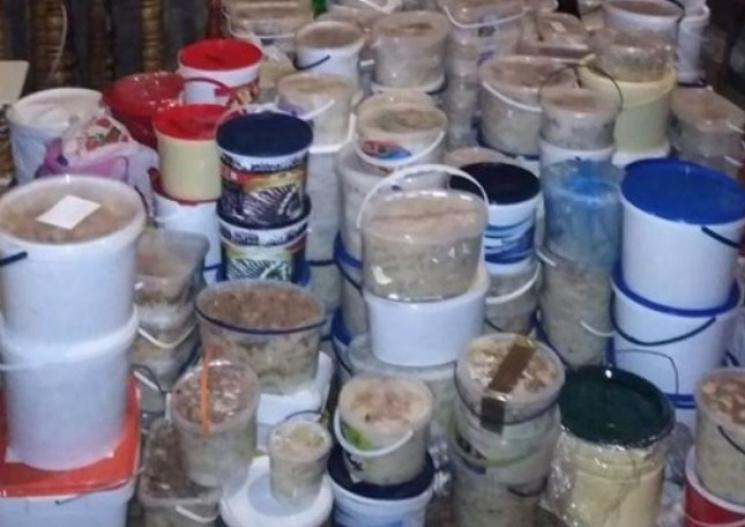 Смачний прикарпатський рекорд: Як виглядають 43 тисячі вареників