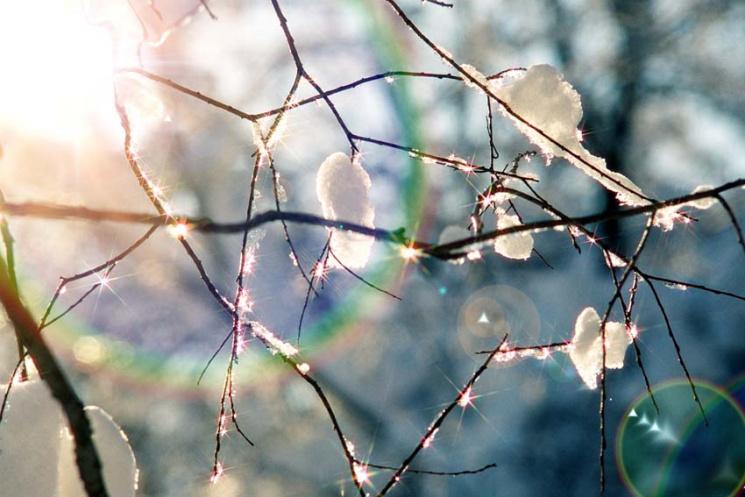 У перший день весни радійте, святкуйте ще один новий рік і навіть не намагайтеся старанно працювати