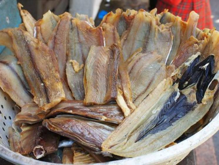 На Хмельниччині риба у Південному Бузі ловиться одразу з ботулізмом