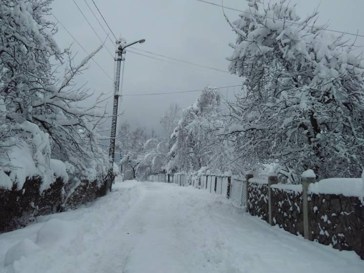 Як сніг додав казковості Трускавцю (ФОТОРЕПОРТАЖ)