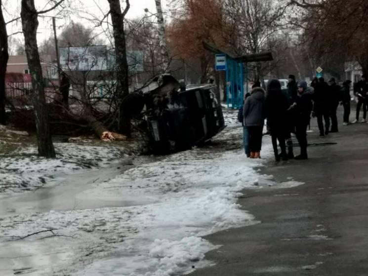 ДТП на Полтавщині: Водій позашляховика влетів у дерево (ФОТО)