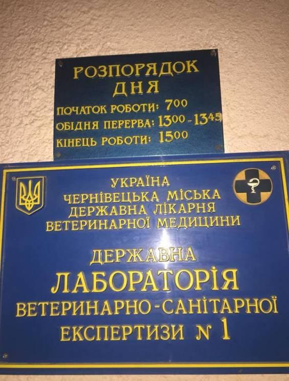 Через АЧС на ринках Чернівців посилили контроль за м'ясом (ФОТО)