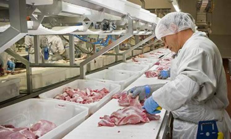 На Хмельниччині переробляють лише 5% тваринницької продукції місцевого походження