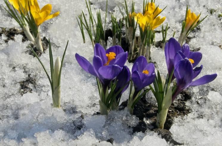 Велике Стрічання: Що 15 лютого треба обов'язково запалити, освятити і відчути